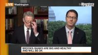 Ролята на банките в САЩ във възстановяването, част 2