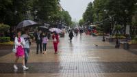 S&P потвърди 'BBB' рейтинга на България със стабилна перспектива