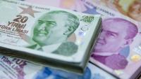 Краят на поевтиняването на турската лира не може да се прогнозира