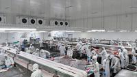 Германското производство на месо намалява с почти 50 хил. тона
