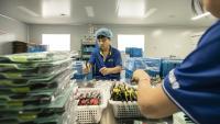 Икономическото възстановяване на Китай остава в релси през октомври