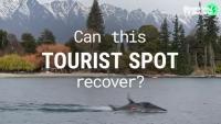 Може ли това място в Нова Зеландия да се възстанови