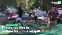 Жителите на Мавриций трескаво се борят с петролния разлив