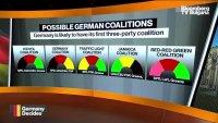 Зелените в Германия искат промени в политиката, част 1