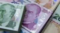 Турската лира е сред най-силно представящите се валути на развиващите се пазари