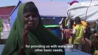 Сомалия се бори едновременно с наводнения и скакалци
