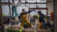 Франция поставя краен срок на Великобритания в спора за разрешителните за риболов