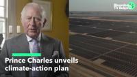 Принц Чарлз представи климатичен план