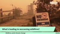 Какво стои за влошаването на горските пожари
