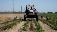 ЕС се приближи до сделка за субсидиите в земеделието