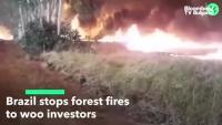 Болсонаро забрани палене на огън в Амазония