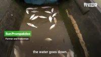 Къде е водата на река Меконг: част 2