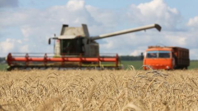 Какво стои зад рязкото повишаване на цената на земеделската земя у ...